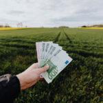 Contributi a fondo perduto previsti dal Governo Draghi per le partite IVA